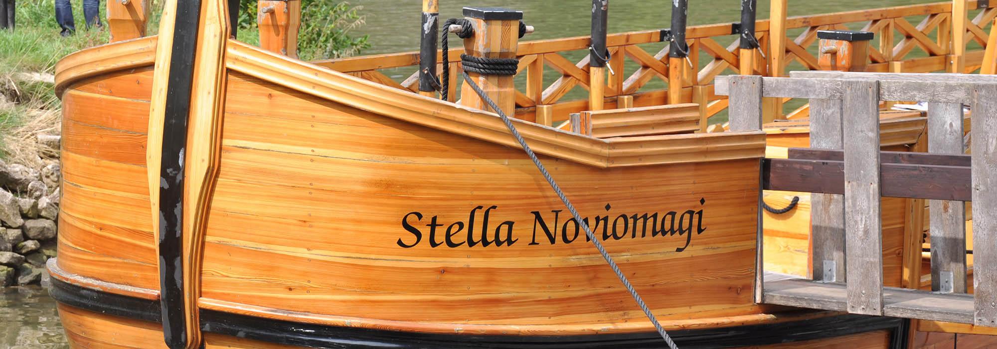 Stella-DSC_2964